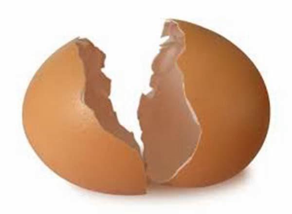 مالا,تعرفونه, عن, فوائد, قشر, البيض, في, الحياة, اليومية, والجمال, فوائد قشر البيض في الحياة اليومية , 7 فوائد في قشر البيض