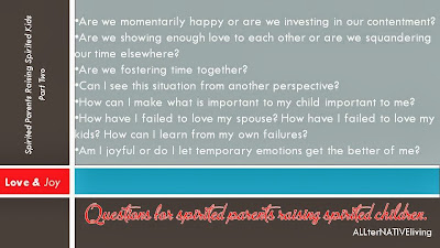 questions to ask in being a spirited parent