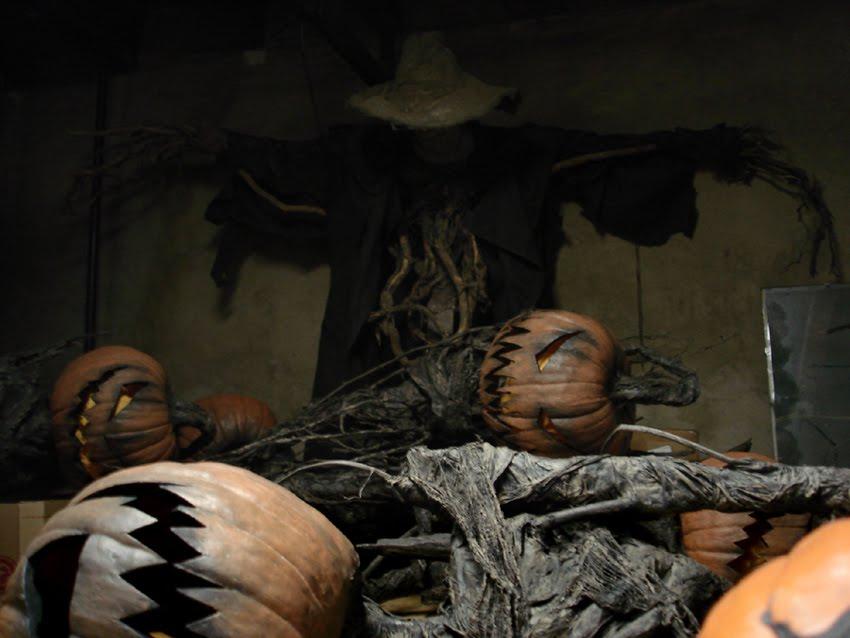 pumpkinrot com what 39 s brewing asleep in the basement