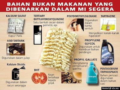 bahaya makan meggi, kandungan racun dalam megi, megi dan kehidupan, maggi dan bahan kimia,