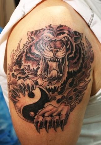 Wild tattoos tiger tattoo designs for Cool tiger tattoos