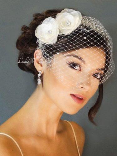 Wedding Birdcage Veil By Bridal By Leslie V FabEllis