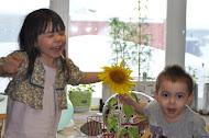 Sunshine Happiness with Sunflowers