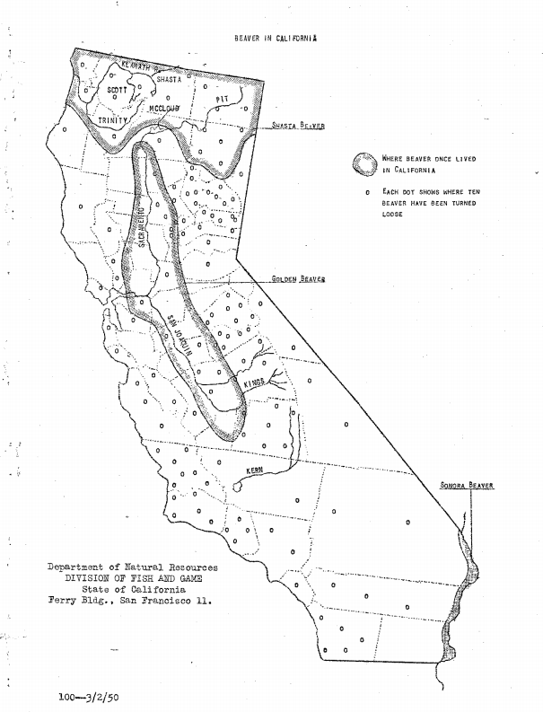 Southland Beaver: Southern California\'s Santa Margarita River ...