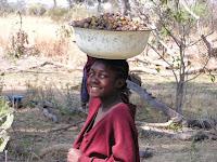 African-Food-Gathering