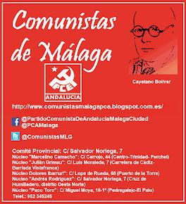 """Página del Comité Provincial y Local """"Cayetano Bolívar"""" del PCA de Málaga"""