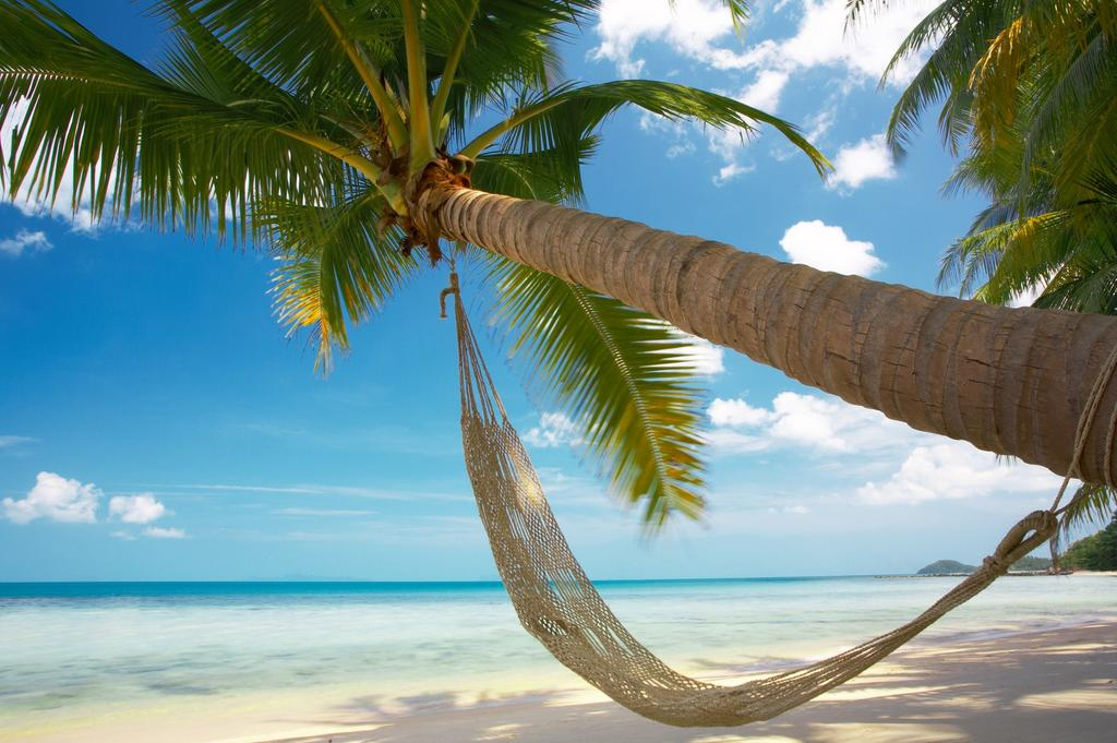 cayenne guyane tourisme -