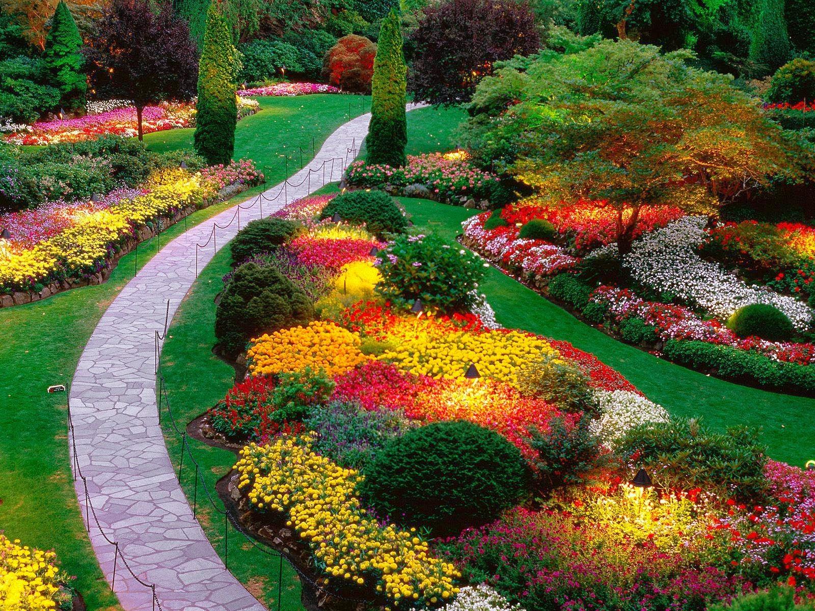 Nice Flowers Gardening