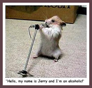 Funny animal with funny sayings funny animal with funny sayings
