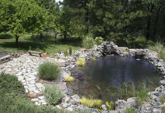 The backyard guru how to build a pond in your backyard for Goldfish pond depth
