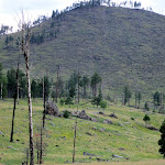 Hochderffer Fire June 1996