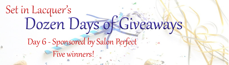http://www.setinlacquer.com/2014/02/dozen-days-of-giveaways-day-6-salon.html