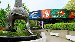 Bienvenido al Acuario de Vancouver, Canada