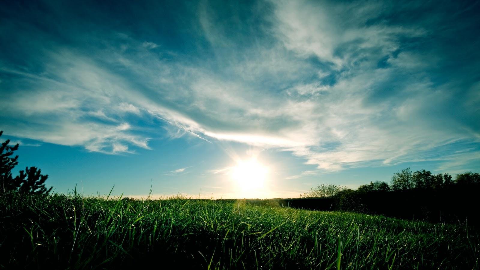 http://1.bp.blogspot.com/-sy2UlnR3RiU/TqA5_-7i_BI/AAAAAAAAAOM/8Yds6lD-Mqc/s1600/Nature-Full-HD-Wallpaper-national-geographic-7822275-1920-1080.jpg