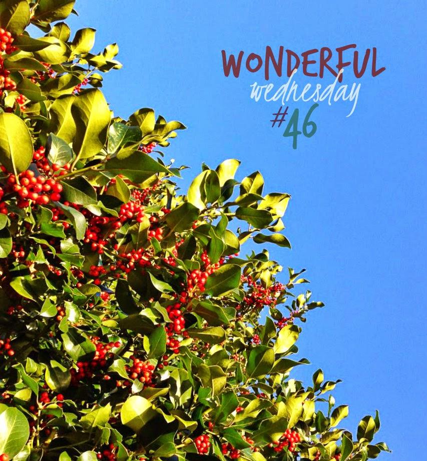 Wonderful Wednesday #46