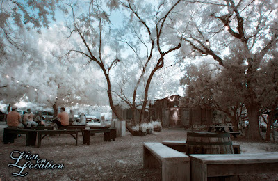 The Grapevine in Gruene, New Braunfels, infrared photography