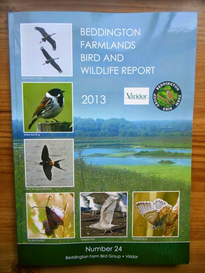 BEDDINGTON FARMLANDS BIRD AND WILDLIFE REPORT 2013