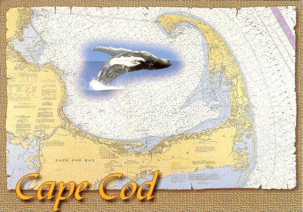 map postcard of Cap Cod
