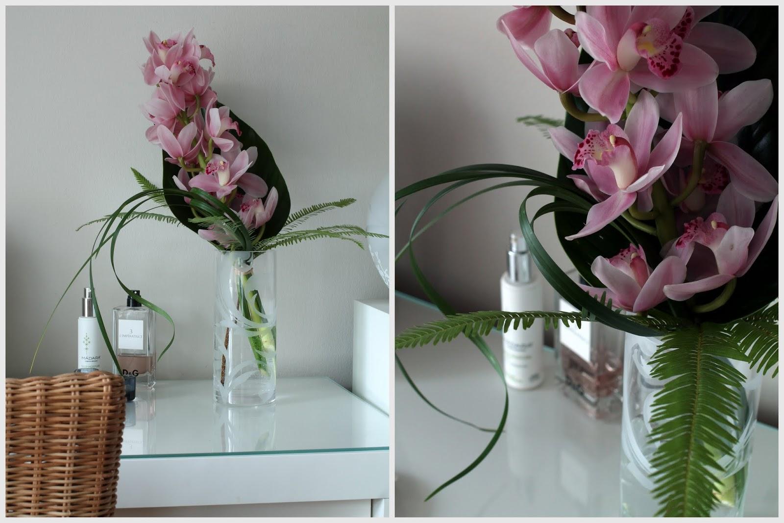 sidottu orkidea