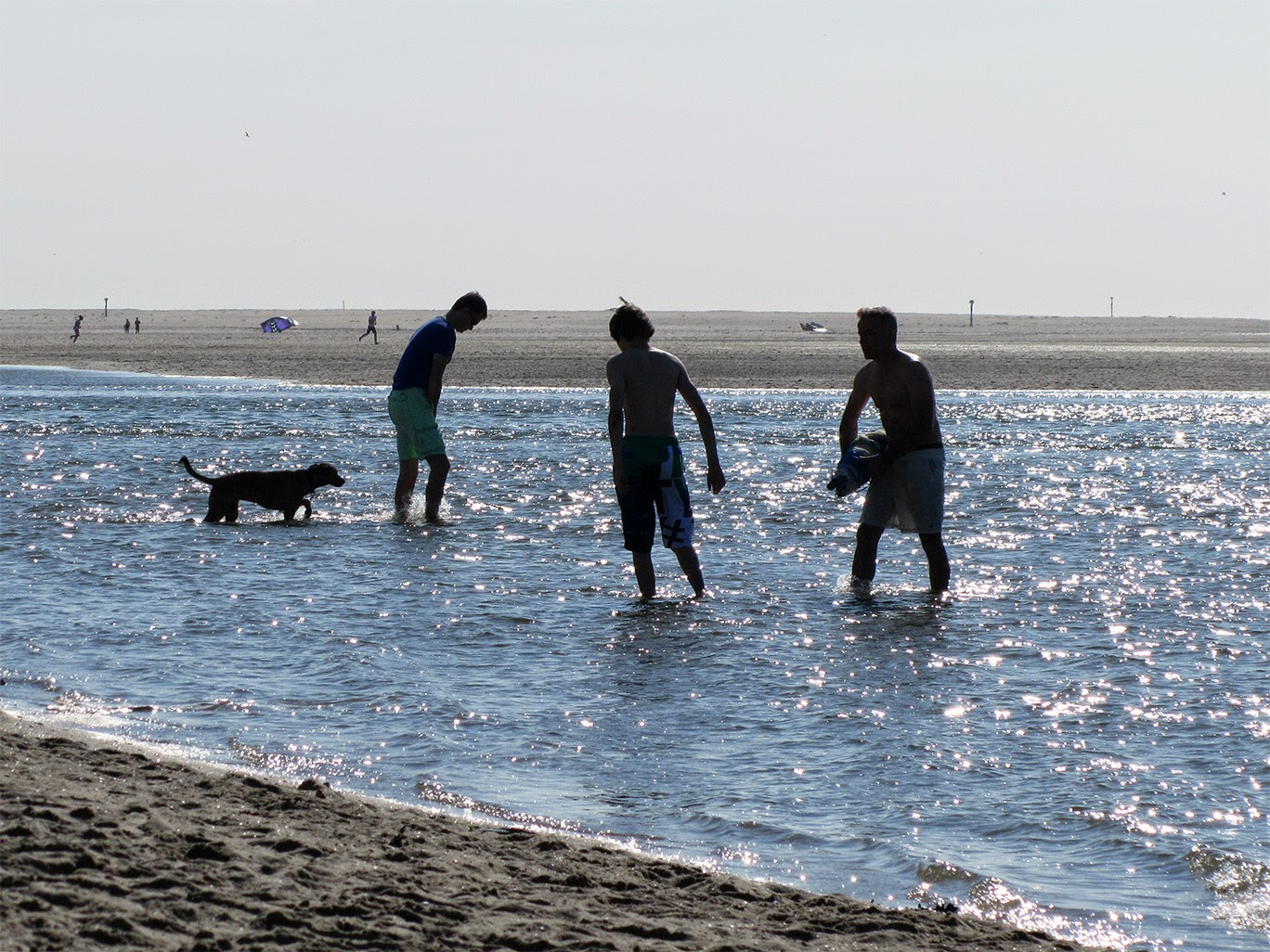 guys playing in the sea
