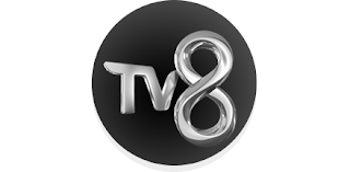 Tv8-yilbasi-foto