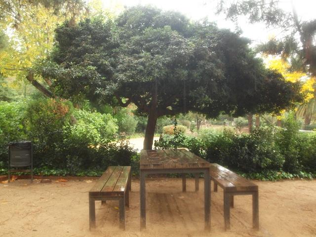 zones picnic barcelona: