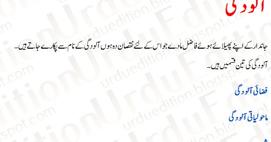 Essay on pollution in urdu language : Writing And Editing Services : attractionsxpress.com