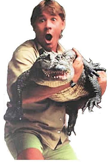 compsocsci  crocodile hunters versus zoo keepers  aspiring data scientists should speak python