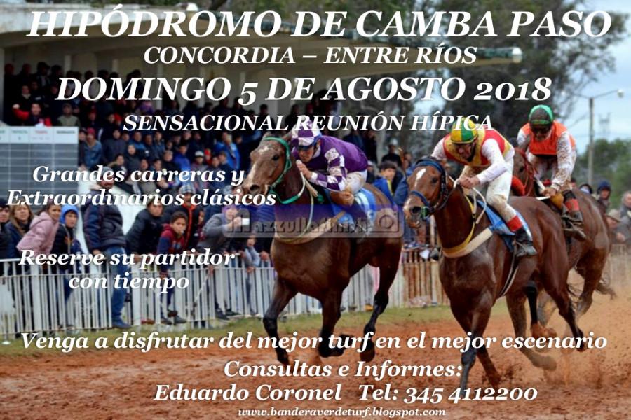 CAMBA PASO DOMINGO 5