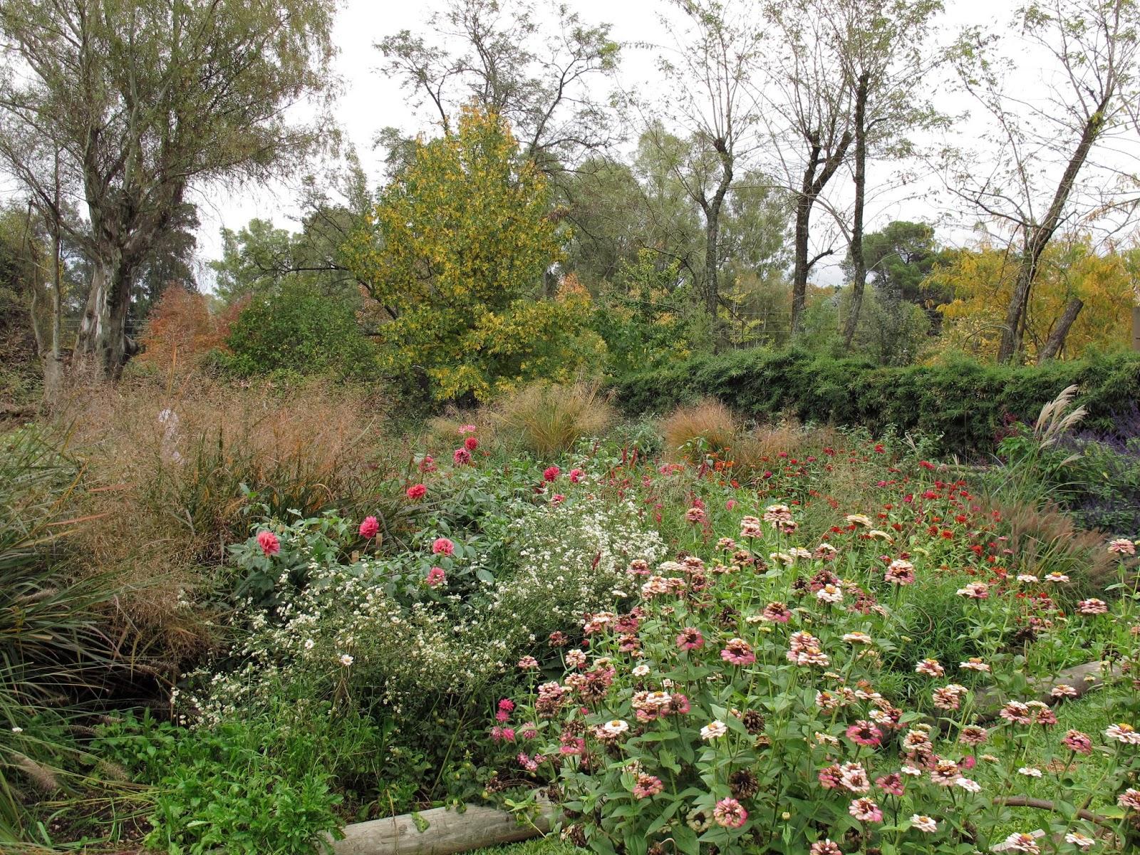 En el jardin cercos tapar hasta d nde for Tendedero jardin