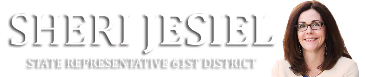 Illinois State Representative Sheri Jesiel
