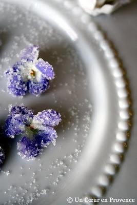 Détail de violettes cristallisées