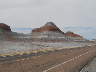 petrified forest rock formations