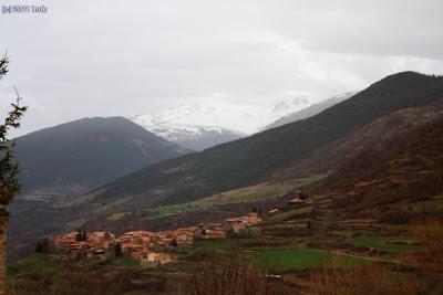 Pardines des de l'Ermita de Santa Magdalena de Puigsac (Isabel 'inuk')