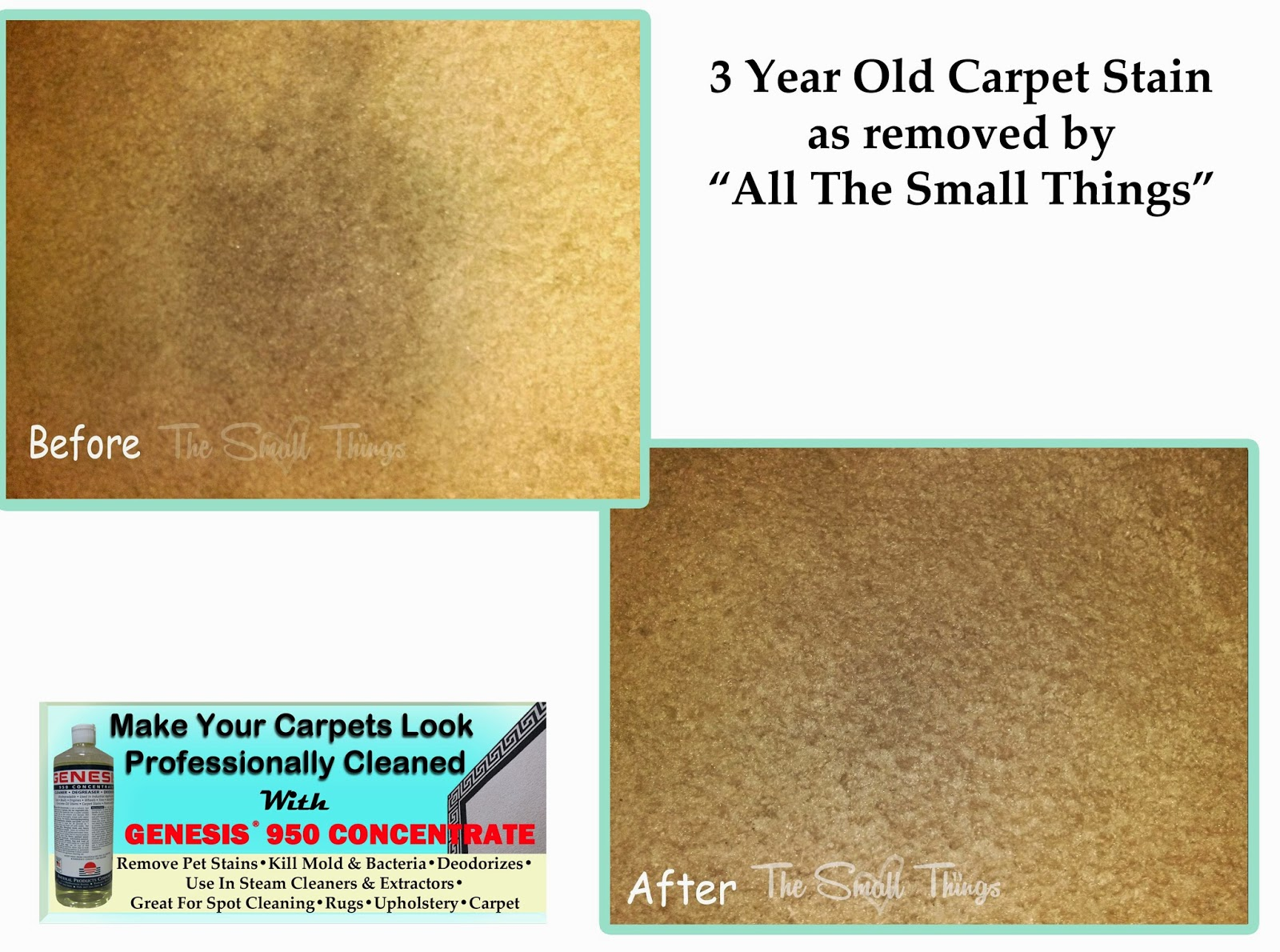 remove old carpet stains