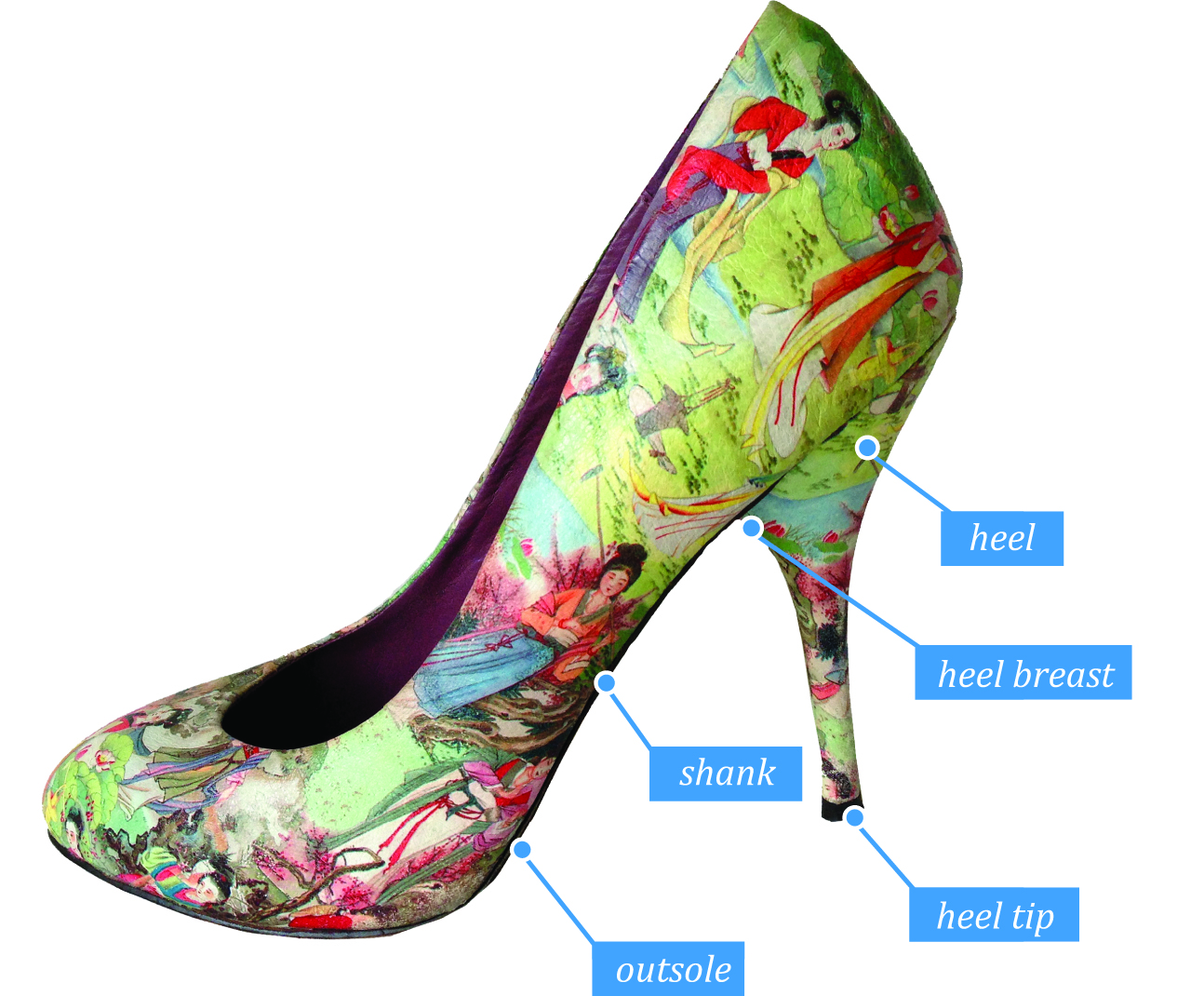 Anatomy of heel