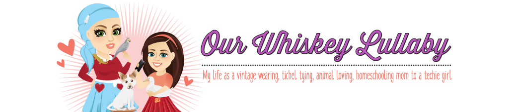 Our Whiskey Lullaby