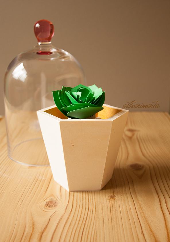 Paper Plant - estherimenta
