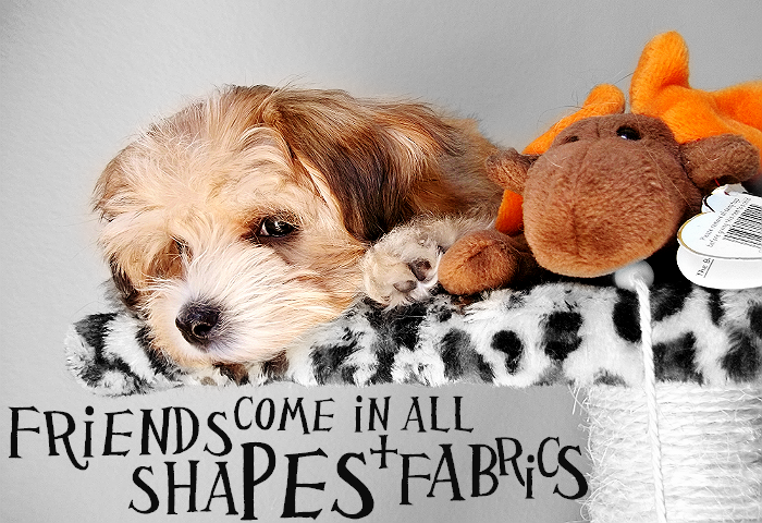 Friends Come in All Shapes And Fabrics. #NudgesMoments #Shop