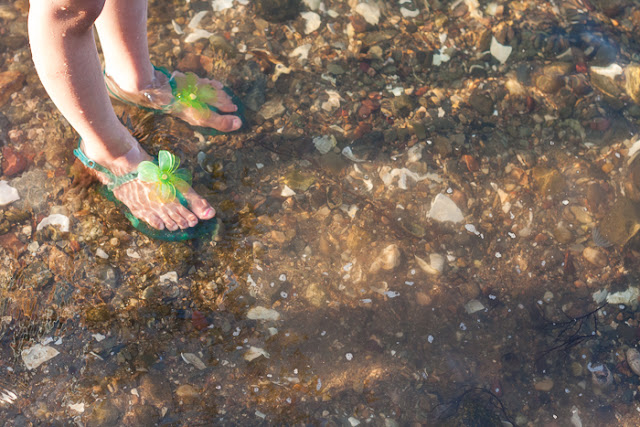 little girl's feet in green sandals wading in the water