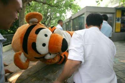 tigre fugindo