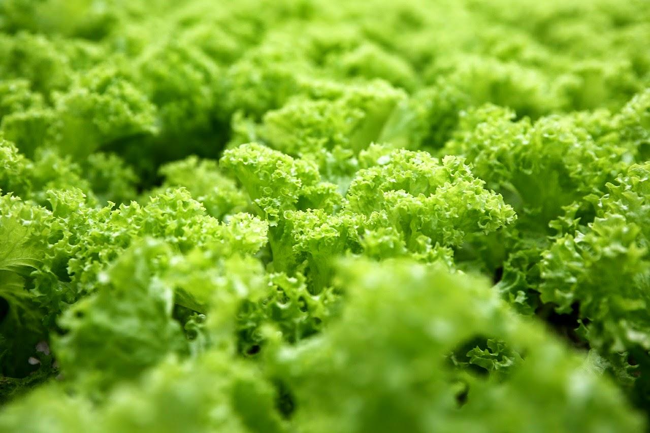 Tip  για to πλήσιμο των λαχανικών σας.