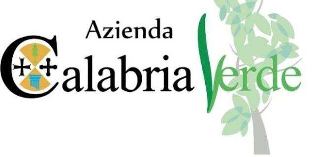 """Short list per consulenti in materia contabile, l'Azienda """"Calabria Verde"""" sospende l'avviso pubblico"""