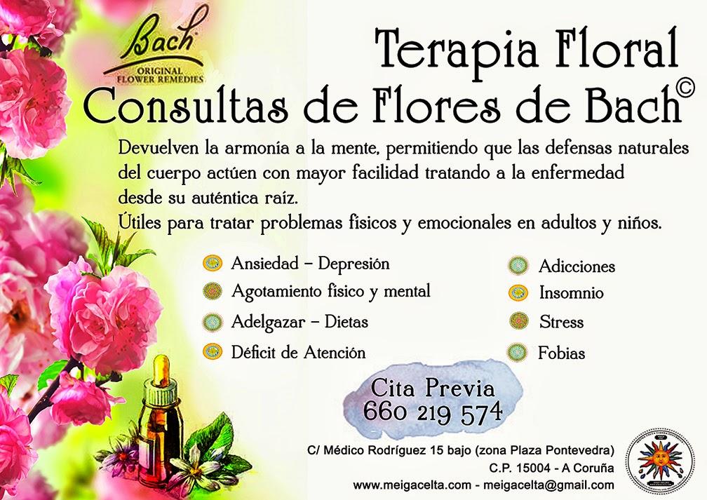 Consulta Flores de Bach Personalizada A Coruña Meiga Celta Terapeuta Floral