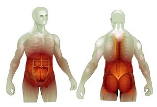 A importância do Core para o Pilates