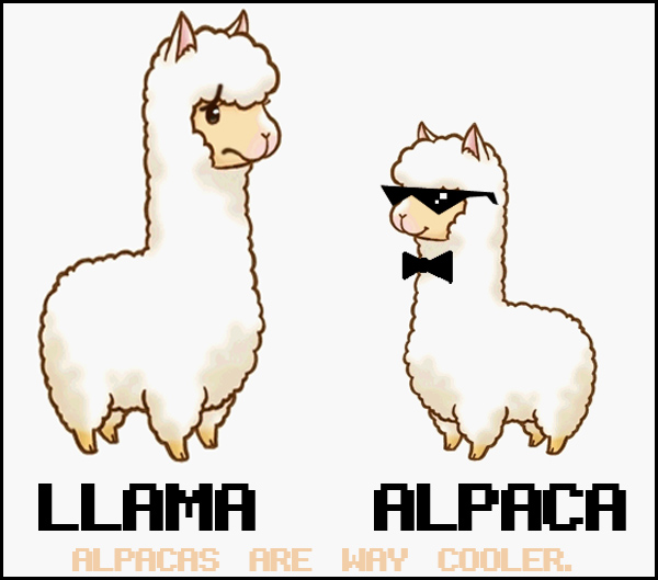 Cute Alpaca Drawing Images & Pictures - Becuo