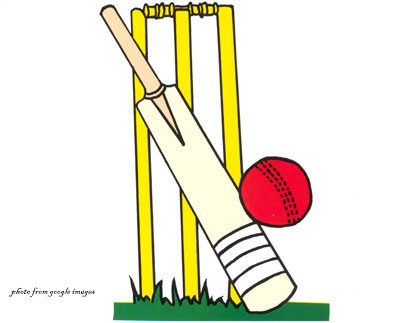 Lights, Cricket, Action - Cricket World Cup 2011 Review
