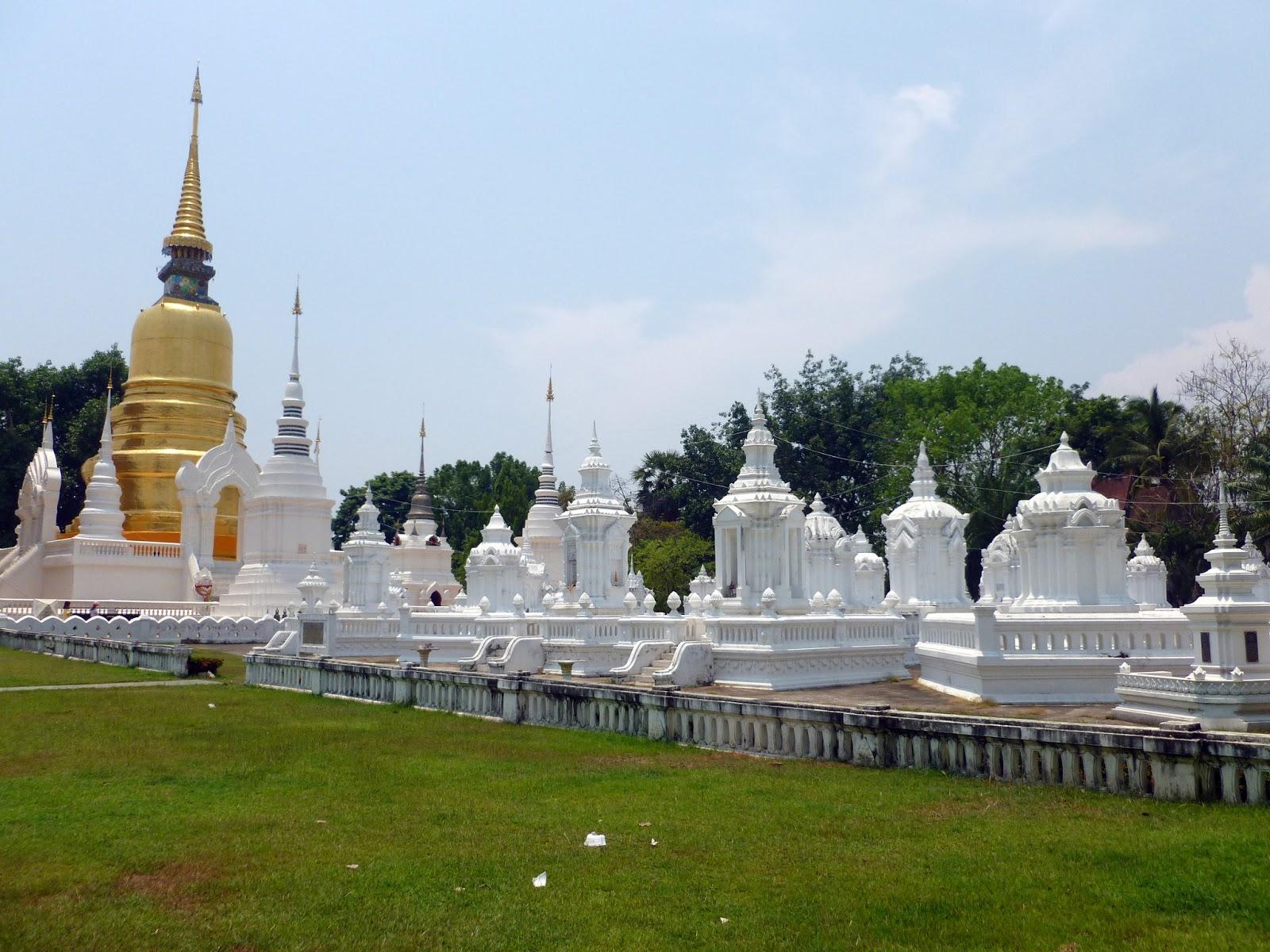 The last of Chiang Mai: Wat Suan Dok, Wat Chedi Luang & Muay Thai  The B...