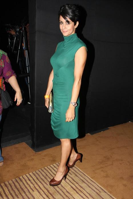gul panag at anita dongre's fashion at lfw 2012. actress pics