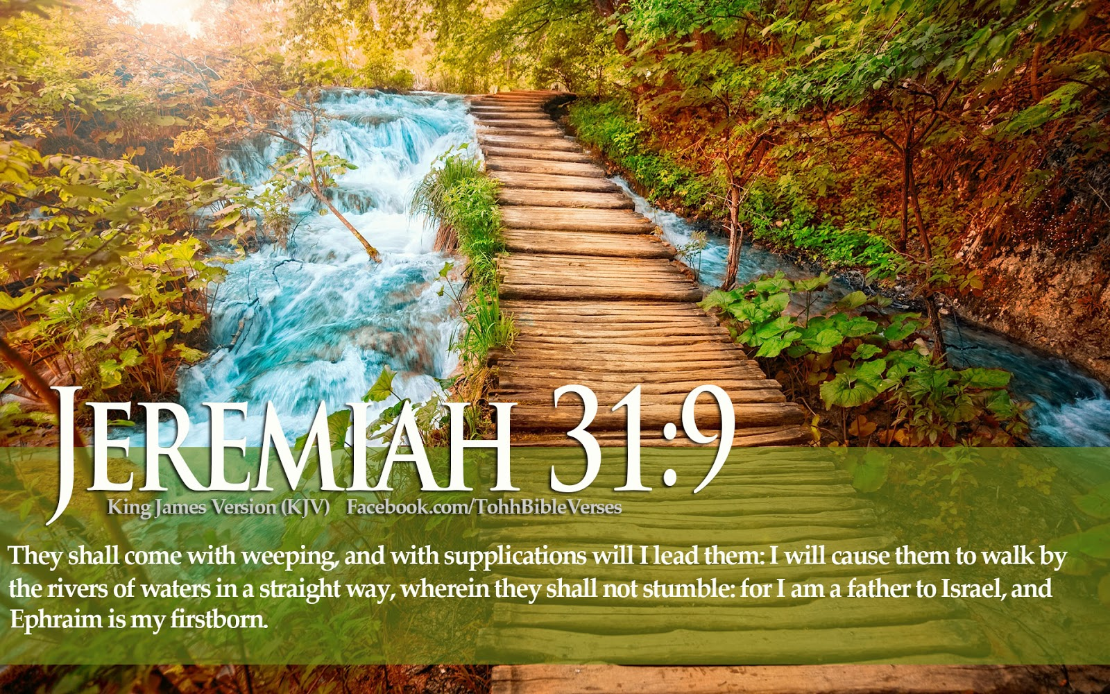 Download hd christmas new year 2018 bible verse greetings card christian images with bible verses kristyandbryce Gallery